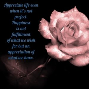 Appreciate & Celebrate Our Daily Lives Why is it so hard to appreciate and celebrate our daily lives?